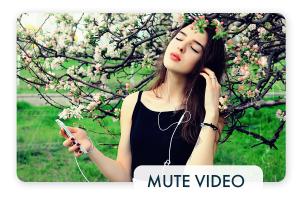 How to Mute Video